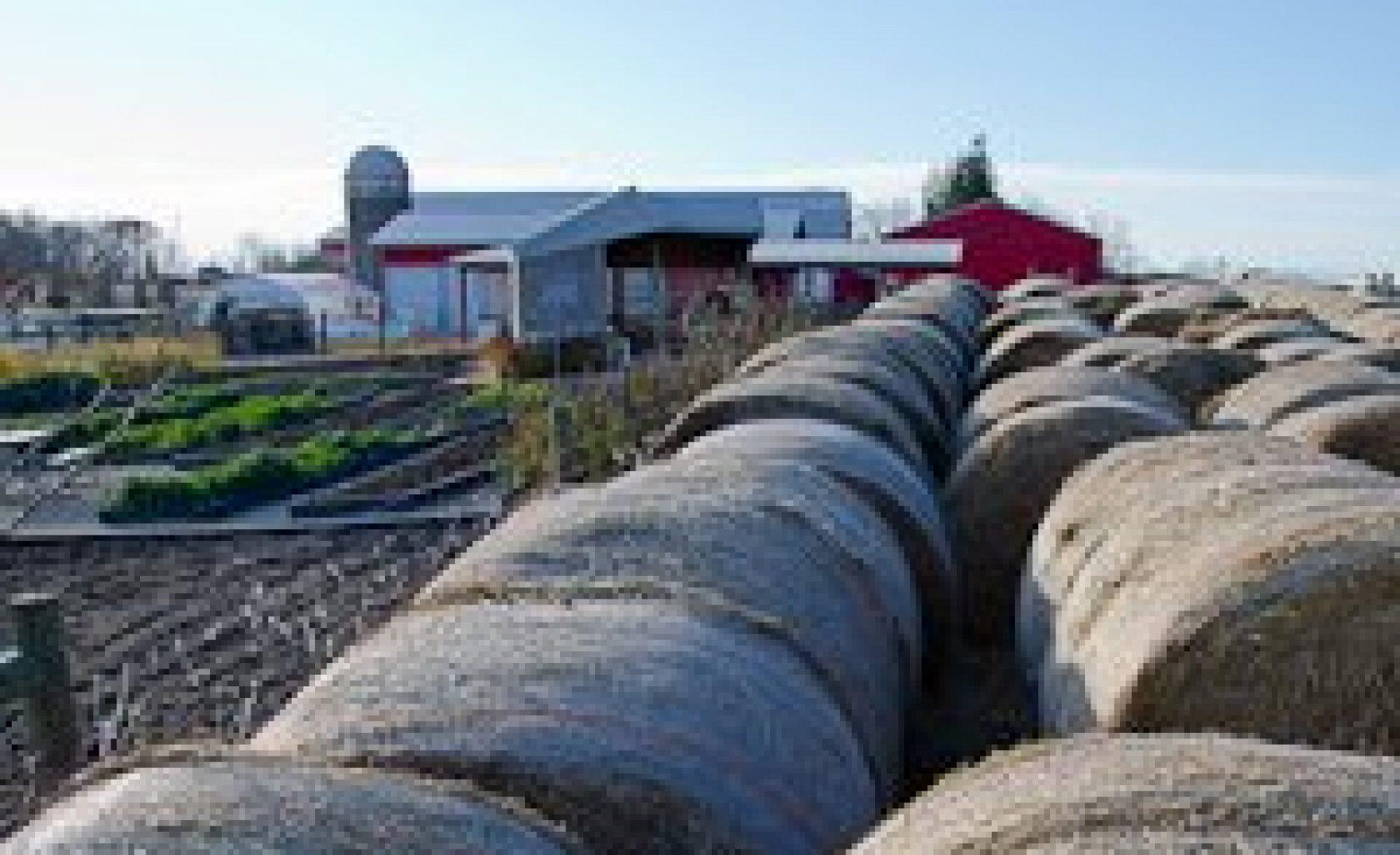 Photo Shoot – Gale Woods Farm